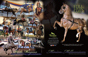 Minion Millennium The Morgan Horse magazine, January 2014