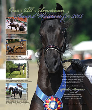 The National Horseman Feb 2016